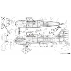 Printed Curtiss Hawk P6E