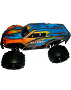 HSP 1/8 Savagery Spares (Brushless Monster Truck)